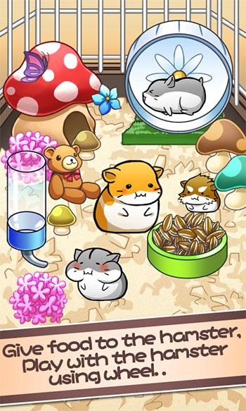 Hamster Life App
