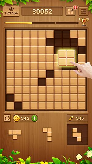 Wood Block Puzzle App